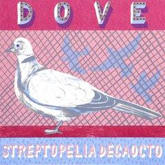 ALICE PATTULLO: D IS FOR DOVE