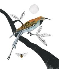 BEATRICE FORSHALL: BEE EATER