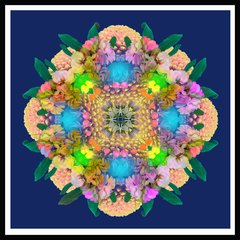 'Flower festival' Print