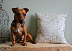 Earthy Henna cushion