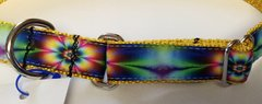 Dog Collars - Buckleless Martingale