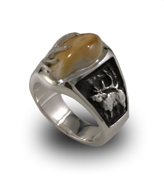 Elk ivory rings wedding