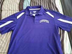 Coyotes Avail Polo