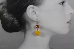 Agate & Carnelian Dangle Earrings