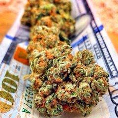 BankOfMarijuana.com