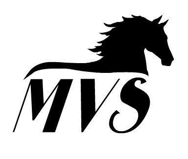 Mountain View Studios Inc.