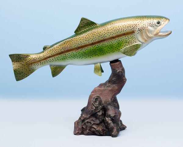 "Rainbow Trout 18"""