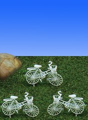 Bicycle (12 PCS SET)