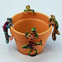 Md Multicolor Gecko (12 PC SET)