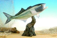 """Blue Fish 19"""""""