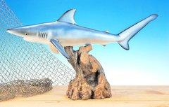 """Blue Shark 14"""""""