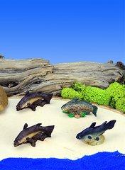 Mini Catfish (12 PC SET)