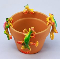 Md Gecko (12 PC SET)