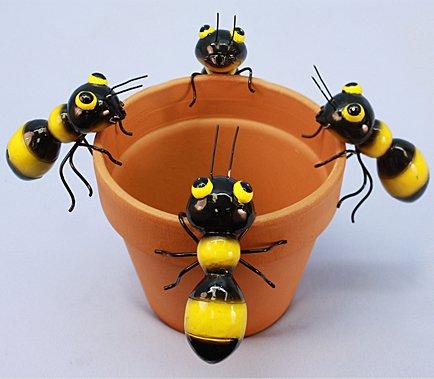Md Bee (12 PC SET)