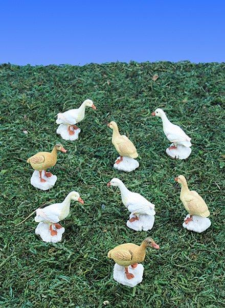 Mini Barnyard Ducks (12 PC SET)
