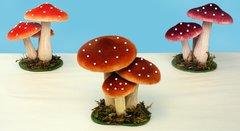 Mushroom (12 PCS SET)