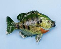 "Sunfish 12"" Fish Mount"