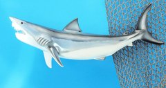 """Mako Shark 20"""""""
