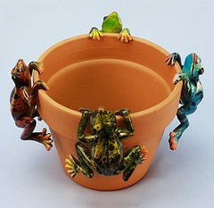 Md Multicolor Frog     (12 PC SET)