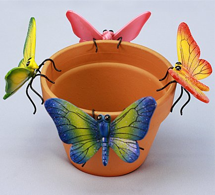 Md Butterfly (12 PC SET)