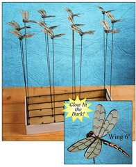 Dragonfly with Free Display (24 PCS SET)