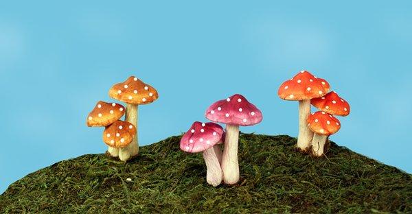 Mini Mushroom Picks (12 PCS SET)