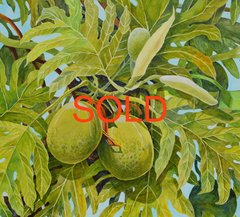 BREADFRUIT SOLD