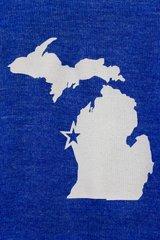 Michigan Zip-Up Sweatshirt (True Royal)