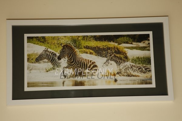 wide picture frames; white wide picture frames, frames with glass ...
