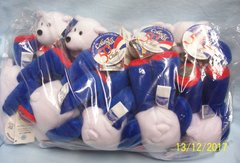 """PLUSH STATE QUARTER BEARS: 10 Discounted Limited Treasures 9"""" Collectible Bears in Unopened Bag #6 Massachusetts"""