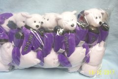 """PLUSH STATE QUARTER BEARS: 10 Discounted Limited Treasures Plush 9"""" Collectible Bears in Unopened Bag #2 State Pennsylvania"""