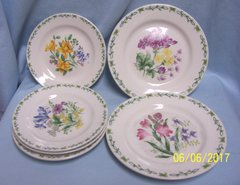 PLATES: Set of (2) Salad Plates (4) Bread & Butter Plates by Thomson Floral Garden
