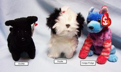 BEANIE BABIES: Ty Beanie Babies Collectible Bean Plush Dogs; Hodge-Podge, Poofie, Scottie