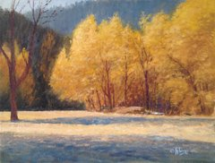 Turkey Creek Autumn Glow 12x16