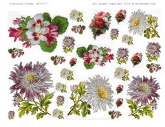 1717 Victorian Floral