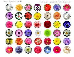 453 Floral Bottle Cap Circles Printable