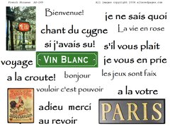 249 French Phrases Printable