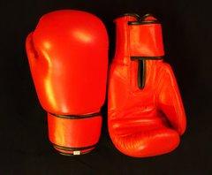 Boxing Gloves12oz