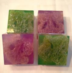 Loofah Scrub Squares