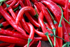 Chilli - Long Red Cayene