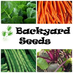 Summer 4 Pack: Beans, Beetroot, Carrot and Silverbeet