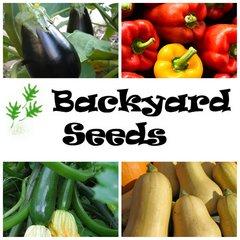 Spring 4 Pack: Capsicum, Eggplant, Pumpkin and Zucchini