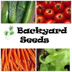 Spring 4 Pack: Carrot, Cucumber, Lettuce and Tomato