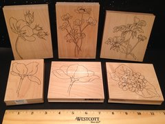 Bargain Bundle: Set of 6 Wood Mounted Floral Stamps Alesa Baker Designs