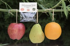 Sukkah Fruit & Pomander Hanger by ClarkRidge Package of 8 reusable hooks!