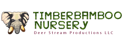 Timber Bamboo Nursery