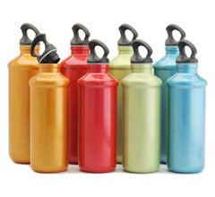 Chic Hydration Bottle Tall 20 oz.