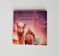 Letter 'B' Metal Coaster