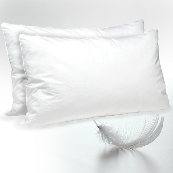 Sandra Venditti Twin Pack Feather Pillow Amazing Products