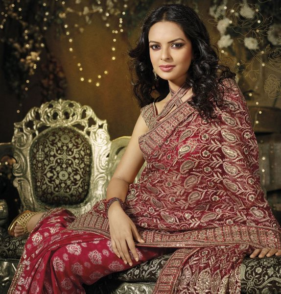 Designer Maroon Schiffli Embroidered Net saree SC9012B